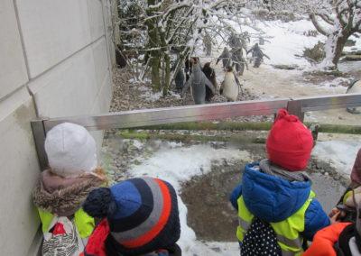 Zoo_19_5